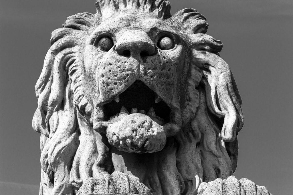 avrupa rüyası macaristan budapeşte aslanlı köprü hikayesi
