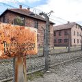 Polonya Auschwitz Nazi Toplama Kampı Turu