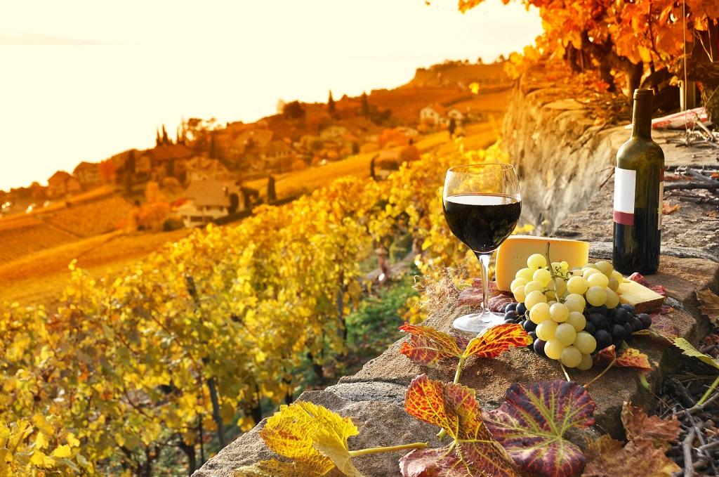 İtalya Toskana Şarabı